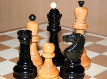 Шахматы: Первенство Краснодарского края — 14 медалей