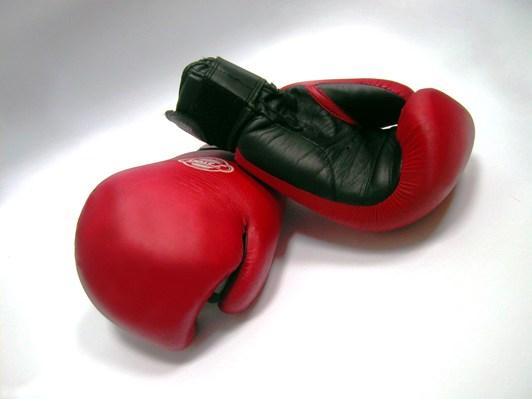 Команда белореченских боксеров заняла третье место в юношеском первенстве Адыгеи