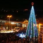 Белореченск, Новый год