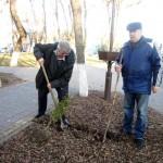 Белореченск, личным составом 27-ПСЧ с участием ветеранов пожарной охраны была произведена высадка саженцев