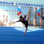 Открытое первенство  Белореченского района по художественной  гимнастике