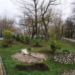 Белореченск, парк