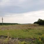 Белореченск, выгон распахали в поле