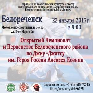 Джиу-джитсу: Открытый чемпионат @ Молодежно-спортивный центр