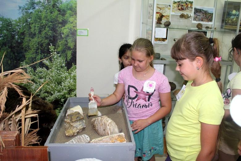 Белореченский музей заполонили юные палеонтологи