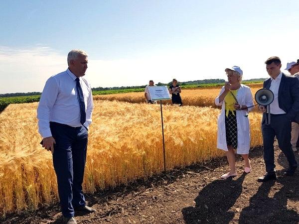 Глава Белореченского района познакомился с разработками кубанских селекционеров