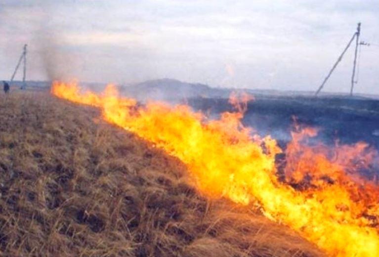 Загорелось поле вблизи п.Южный