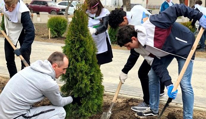 Посади дерево – соверши добрый поступок!