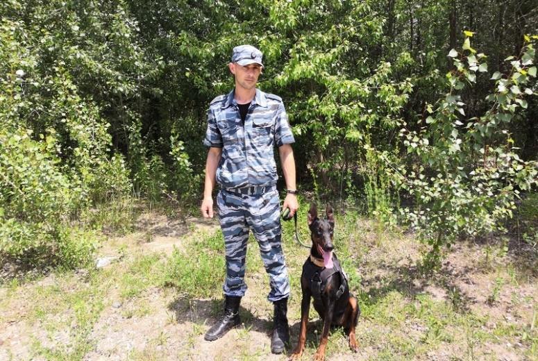 Белореченские полицейские раскрыли кражу с помощью служебной собаки