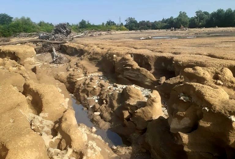 В Белореченске найдены фрагменты костей древнего млекопитающего
